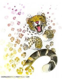 Amur+Leopard