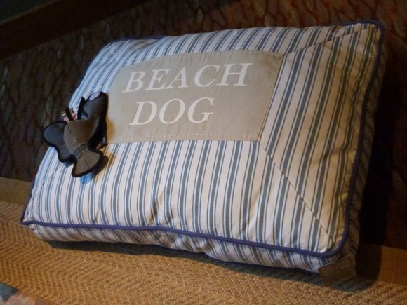 Beach Dog Bed
