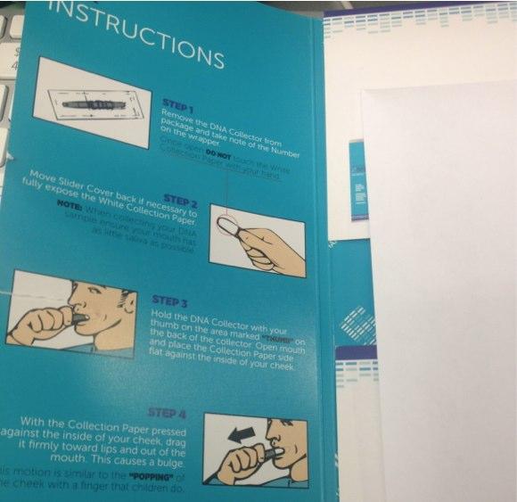 skinshift instructions