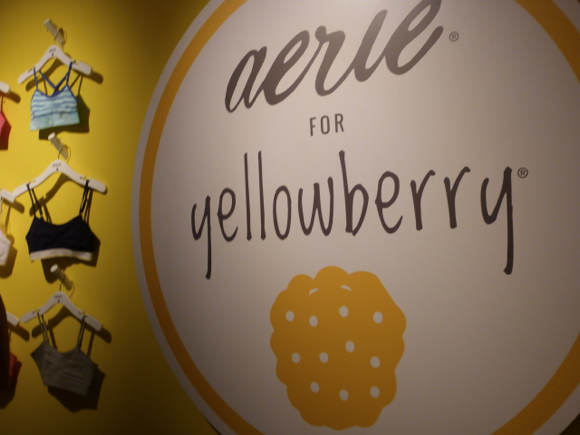 aerie for yellowbery