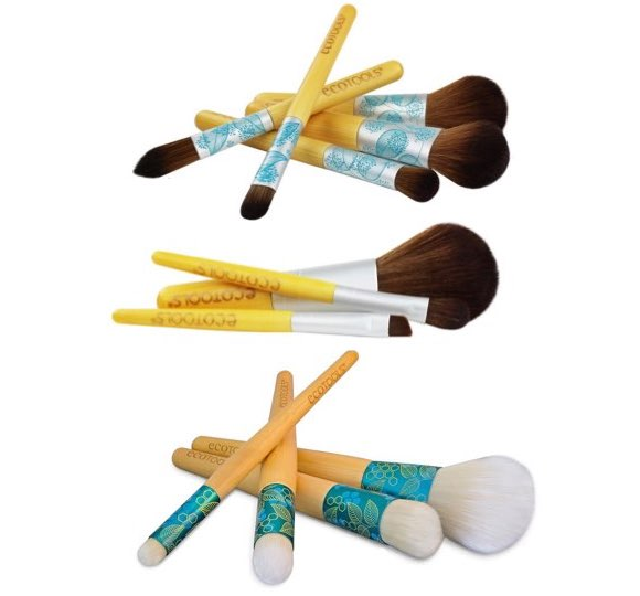 ecotools brush giveaway